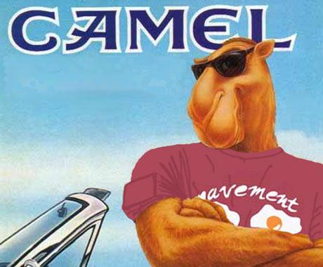 Up-camel_lrg